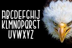 Web Font Eagle Eyes Product Image 4