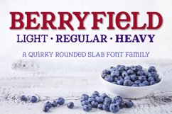 Berryfield - a quirky slab serif font family! Product Image 1