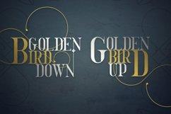 Golden Bird Serif font Cool Extras Product Image 2