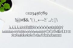 Carita Clean Serif 3 Font Family Product Image 3