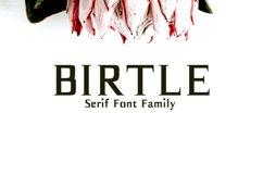 Birtle Serif Font Family Product Image 1
