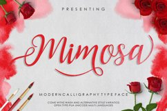 Mimosa Script Product Image 1