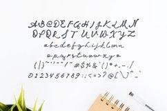 Jakotaki Script Product Image 3