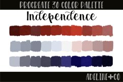 Independence Procreate color palette Product Image 1