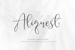 Aliquest Script Font Product Image 1