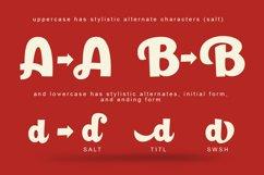 Paladise Font & Extras Product Image 3