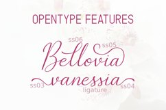 The Bellovia Font Duo Product Image 2