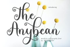 The Anybean Product Image 1