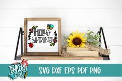 Hello Spring SVG / Cut file / Spring svg Product Image 1