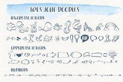 Trés Jolie - Serif Font with Doodles Product Image 3
