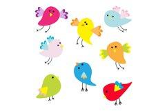 Funny bird set. Vector illustration Product Image 1