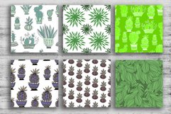 CACTUS and succulents design Product Image 6