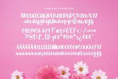 Fostella -Bold Calligraphy- Product Image 6