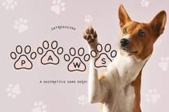 Paws Product Image 1