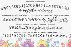 Allegory - a fun and curly script font! Product Image 2