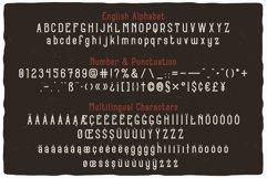 16 Font Families Bundle Product Image 3