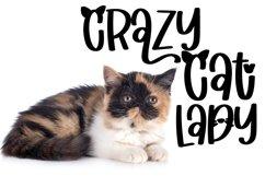 Web Font Catitude - A sassy cat font Product Image 2