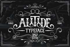 ALITIDE Typeface Product Image 5