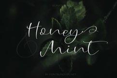Web Font Honey & Mint Script Font Product Image 1