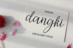 Dangki Script Product Image 2