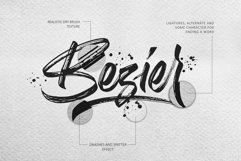Birdrockers || Realistic Brush Font Product Image 6