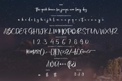 Potretic | New Script Style Font Product Image 5