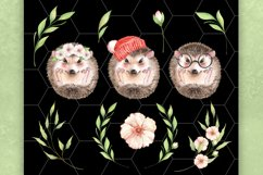 Watercolor hedgehogs Product Image 2