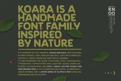 Koara Product Image 2