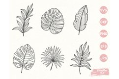 Tropical Leaves SVG, Hand Drawn clipart, Palm Leaves SVG PNG Product Image 2