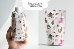 Tropical Collage. Patterns, Cliparts Product Image 5
