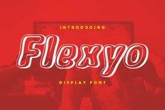 Web Font Flexyo Font Product Image 1