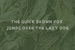 Plantsorhearts handwritten font Product Image 4