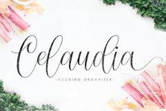 Barbara Blast || Beautiful Script Font Product Image 4