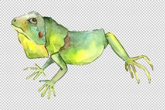 Iguana-1 Watercolor png Product Image 4