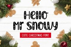 Web Font Mr snowy Product Image 1