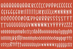 Bumbleberry - a silly serif font Product Image 6