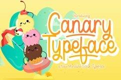Web Font Canary Product Image 1