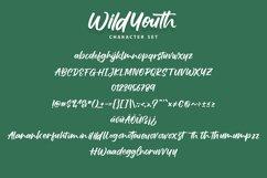 Wildyouth   Brush Handwriting Script Font Product Image 2