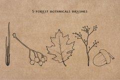 Mushroom Procreate Brushes - Stamp Brushes - Hand Drawn Product Image 4