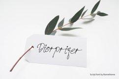Prizertiez - Script Font Product Image 4