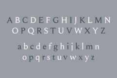 Madelin Serif Font Family Pack Product Image 2