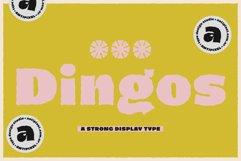 Dingos Product Image 1