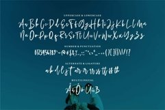 Web Font Dhinar - A Modern Script Font Product Image 4
