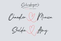 Schrödinger's | Signature Font Product Image 4