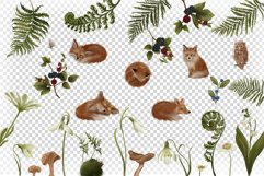 Sleeping Foxes Clip art 30 PNG Digital Hand drawn Fairytale Product Image 3