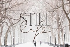 Wintery - A Serif Font Family Product Image 4