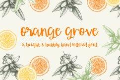 Orange Grove Script Product Image 1