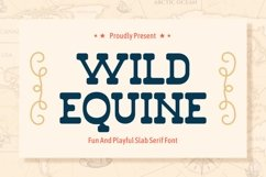 Wild Equine - Fun and Playful Slab Serif Display Product Image 1