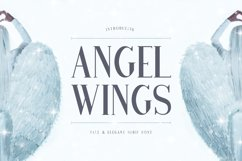 Angel Wings Product Image 1