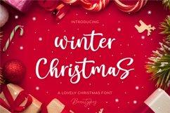 Winter Christmas Product Image 1